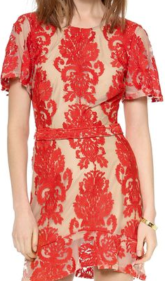 For Love of Lemons Red Embroidered mini Dress – The Best Red Dress